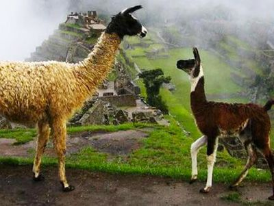 machu-picchu-tour-by-train-2days