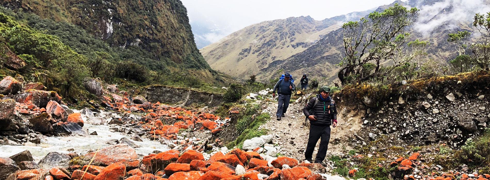Palcay Trek to Machu Picchu 5D/4N - Action Peru Treks